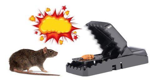 Trampa para ratones ratas de golpe dentada uso efectivo!!!