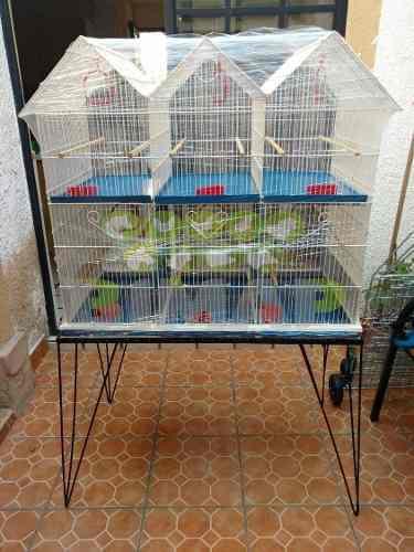 Jaula canarios periquitos aves 6 departamentos con base
