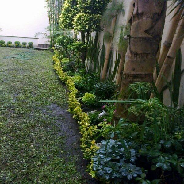 Mantenimientos de jardineria y venta