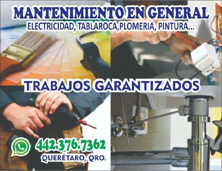 Pintor en Querétaro