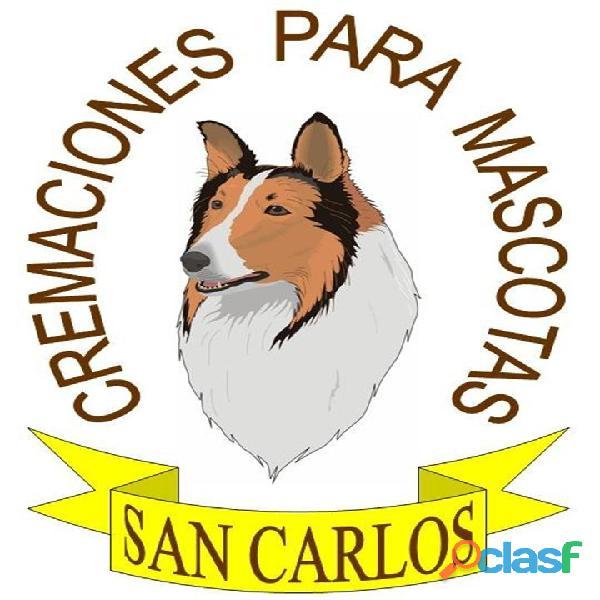 Miguel hidalgo cremación de mascotas tel. 5540250810