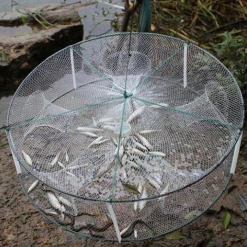 Trampa pesca langosta cangrejo camaron anguila