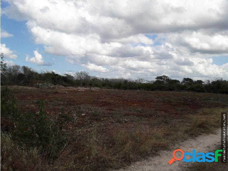 Se vende terreno de 5000m2 en ucu cerca ciudad caucel