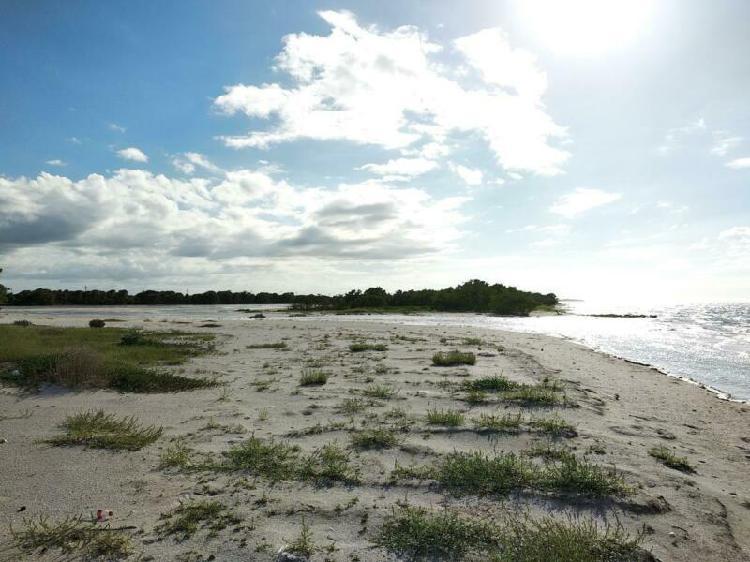 Lotes frente al mar en santa clara mina de oro yucatan