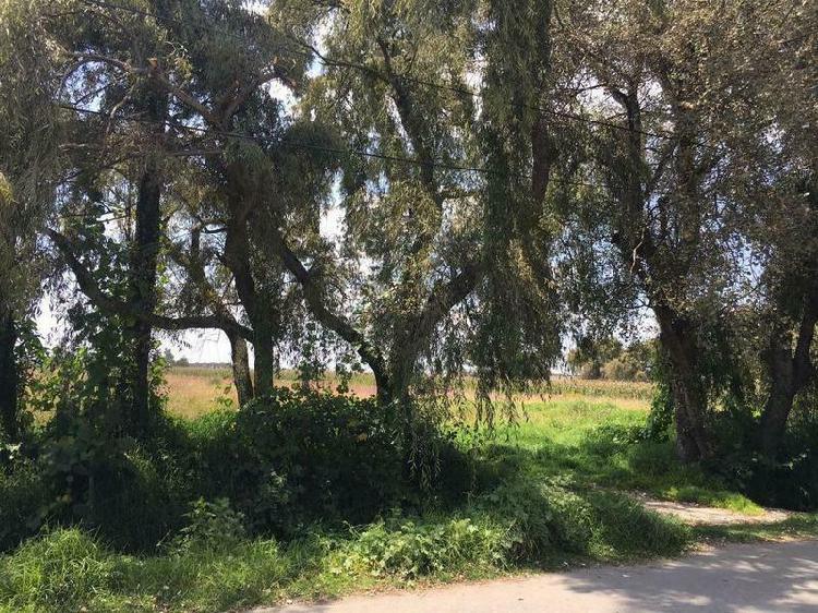 Terreno cerca del aeropuerto de toluca