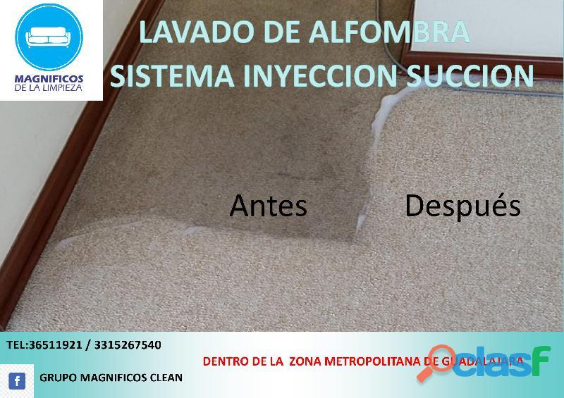 Limpieza de alfombra fija