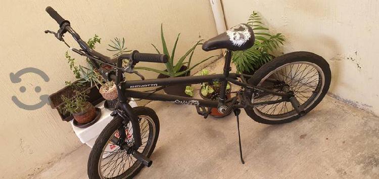 Bicicleta benotto cult free style acero con rotor