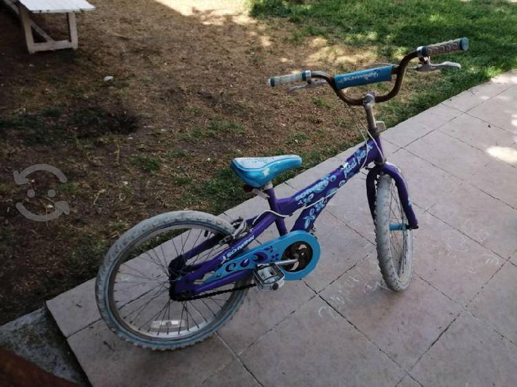 Bicicleta schwinn niña