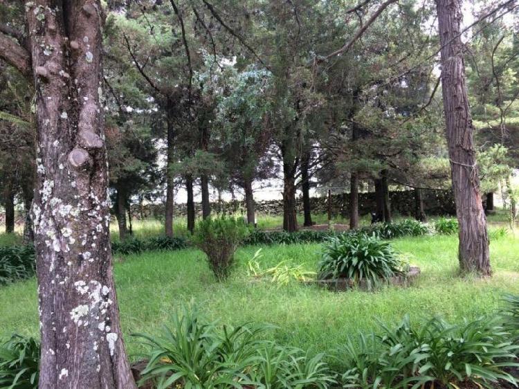 Vendo pequeña propiedad en san pedro huimilpan queretaro