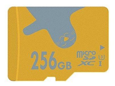 Micro sd u3us
