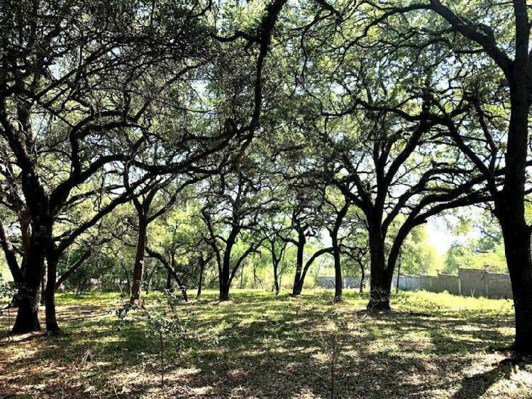 Terreno campestre en venta huajuquito los cavazos zona sur
