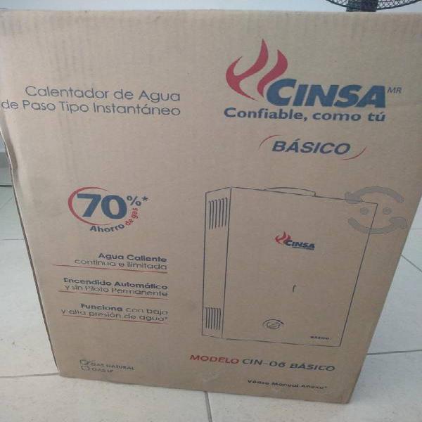 Boiler de paso nuevo cinsa