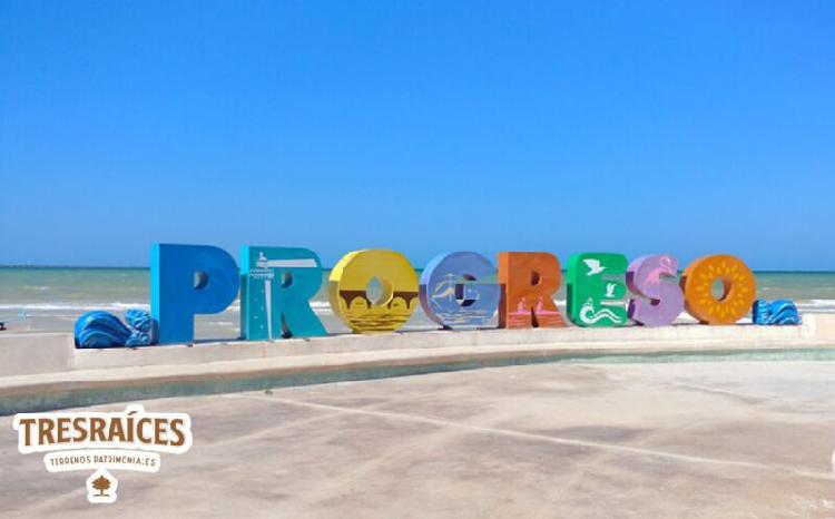 Terrenos zona norte puerto progreso**