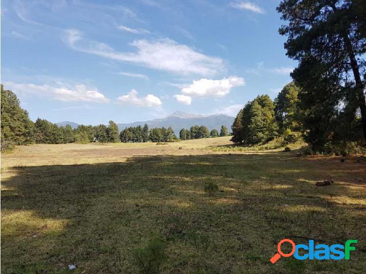 Terreno agrícola 40 hectáreas estado de méxico