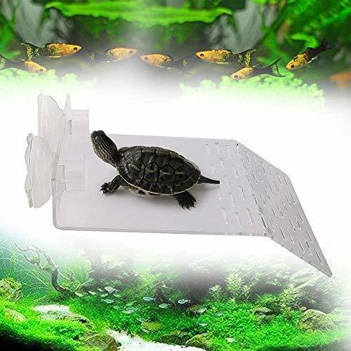 Hellopet tortuga de descanso de terraza nizzco tamaã±o gra