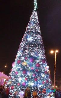 Arboles de Navidad Gigantes 10