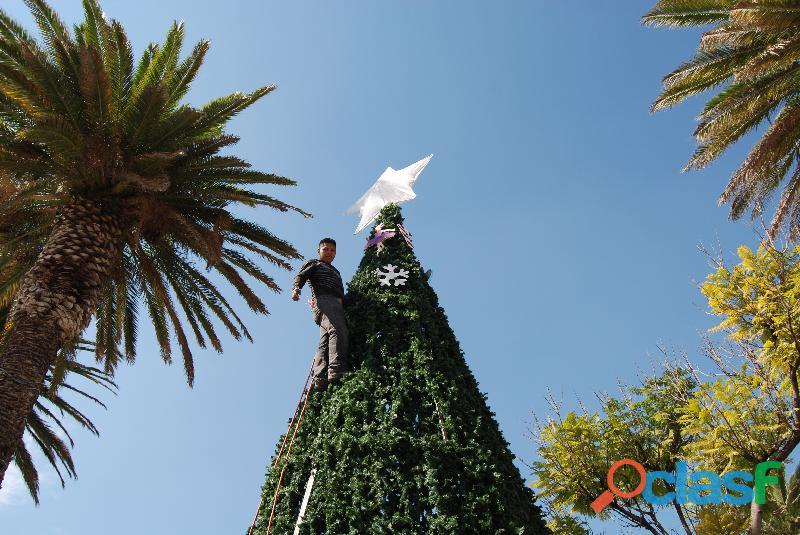 Arboles de Navidad Gigantes 19