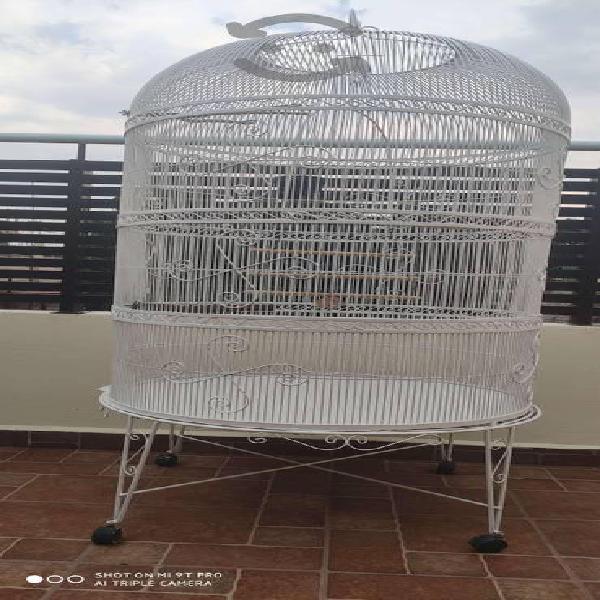 Jaula de lujo artesanal para aves de ornato