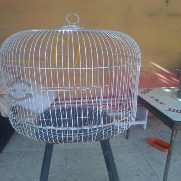 Jaula para pájaros vendo 2