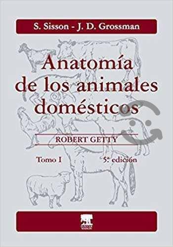 Sisson. anatomia animales domesticos 1 5ed