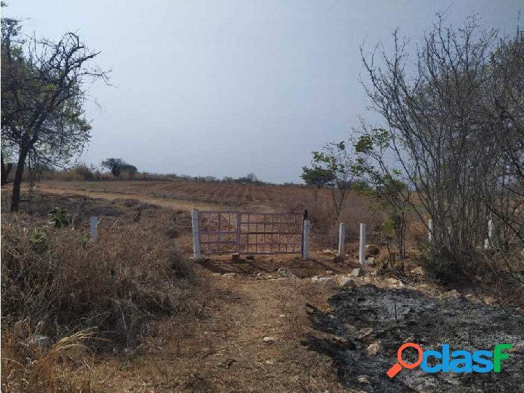 3 hectareas planas sobre autopista