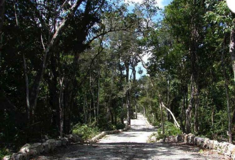 Terreno en venta en tulum/ aldea coral/ chemuyil predio