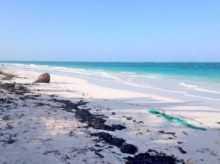 Terreno en venta en riviera maya sian kaan