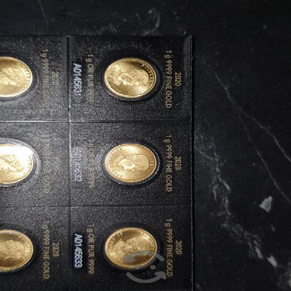 Monedas de 1g de oro 24k