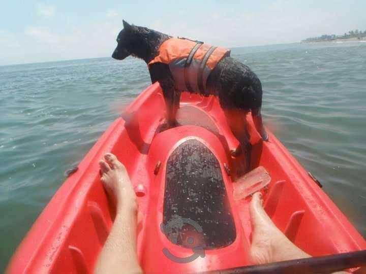 Kayak bic tobago para dos personas