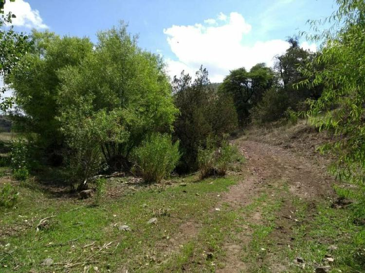 Rancho en venta | san fco de borja | $780 dlls por hectarea