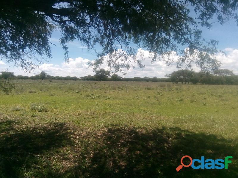 Se vende terreno 5 hectáreas a 5 minutos del centro de tequisquiapan qro.