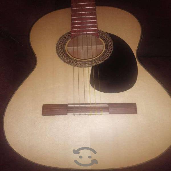 Guitarra acústica paloescrito