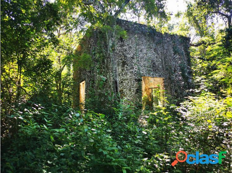 Cenote con héctareas escrituradas en venta en chichimila