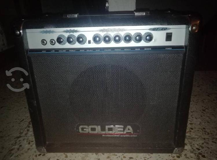 Amplificador guitarra goldea gf-40 transistores