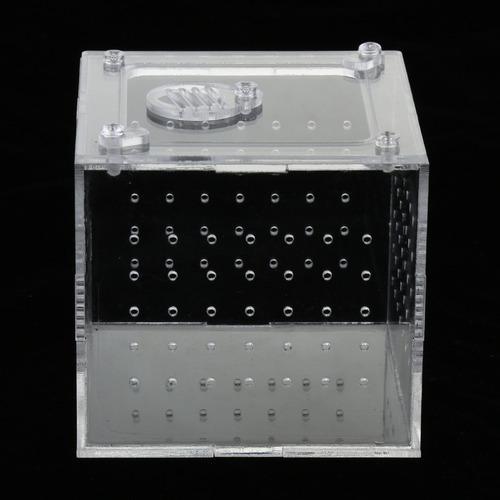 Caja de tanque de peces de acrílico transparente de acuario