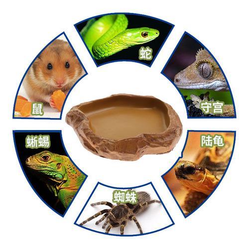 Tanque de reptil de alimentos de agua de alimentación de te