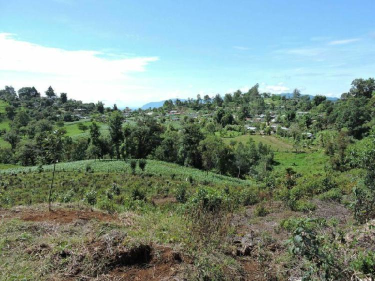 Huatusco, ver. 5 hermosas hectareas con agua. venta