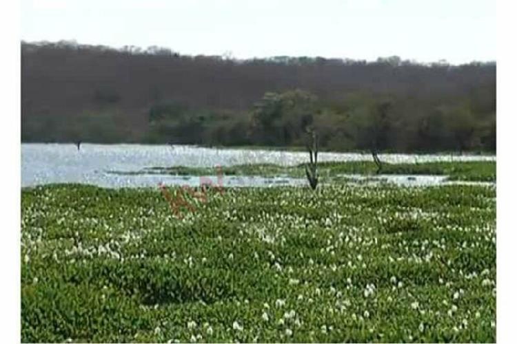 Terreno en venta lomas de monterrey terreno de superficie