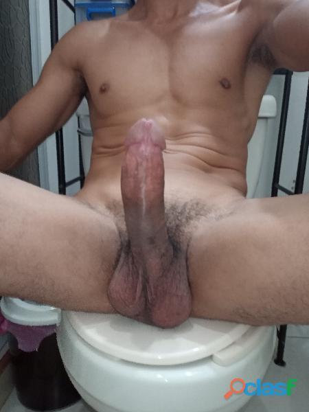 Busco chica transexual