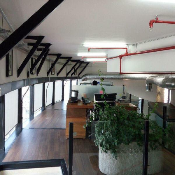 Oficina en renta en paseo de los laureles - bosques de las