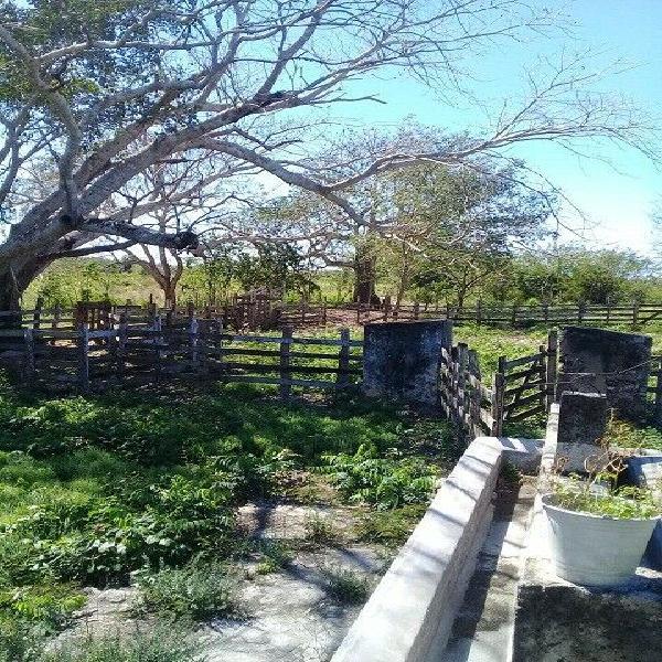 Excelente venta de Rancho Ganadero, Yucatán con 2 cenotes