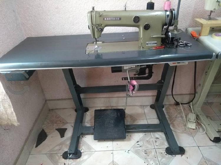 Maquina recta industrial brother