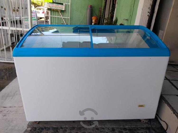 Congelador paletero mediano seminuevo