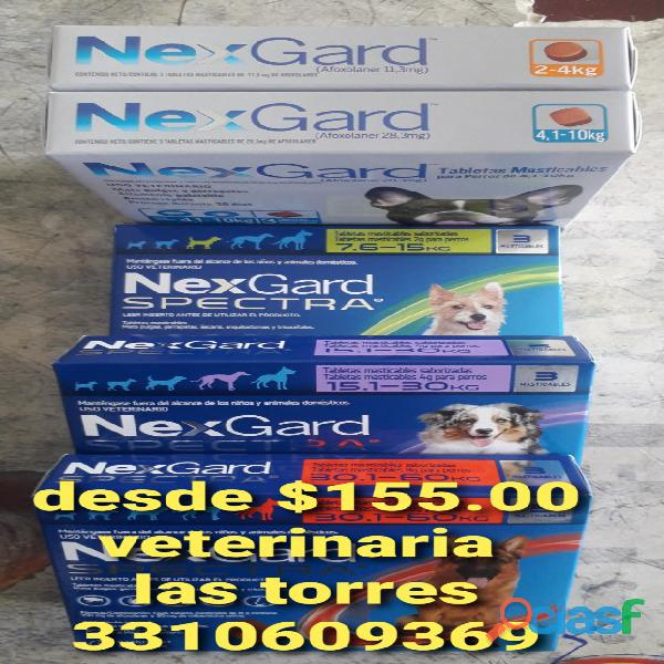 NEXGARD TABLETAS ANTIPULGAS GARRAPATAS