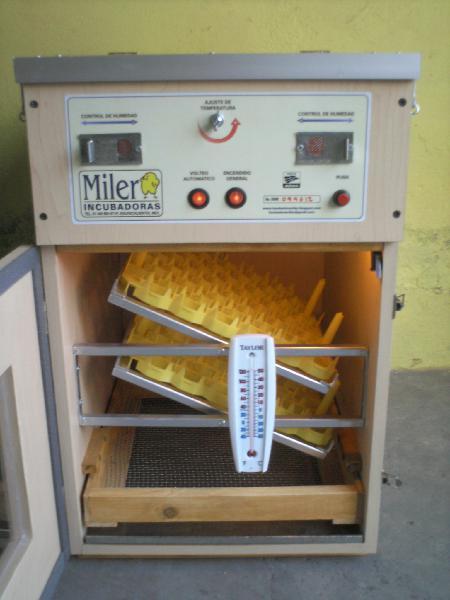 Incubadoras para huevo de gallina, codorniz, etc....