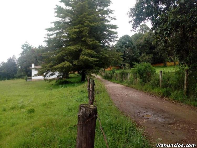 Terreno plano ideal para rancho cerca de autopista llegando