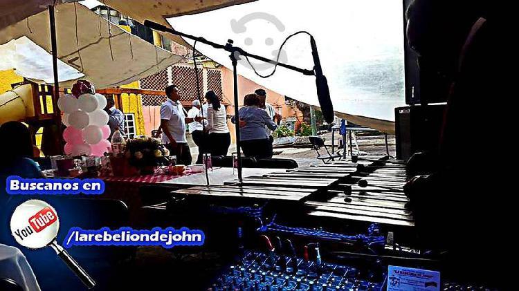 Marimba versátil con audio y luces