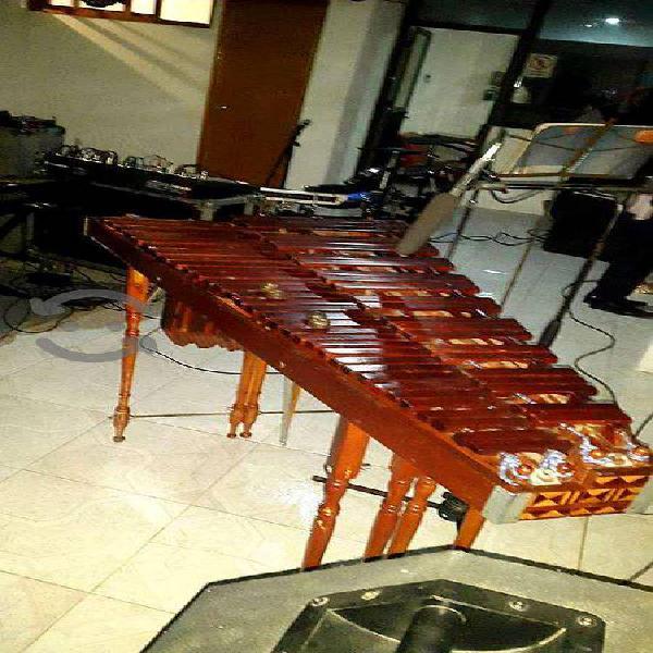 Marimba con grupo versátil precio accesible