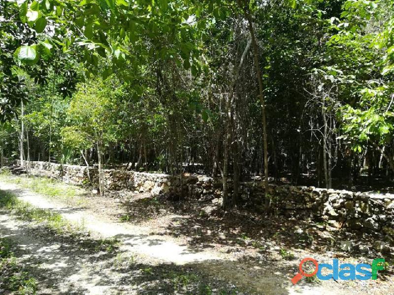 Ruta de los cenotes terrenos a credito sin buro