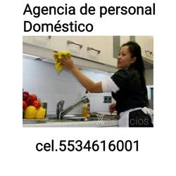 Agencia de servicios domesticos 5534616001